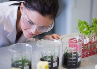 plant-breeding-genetics