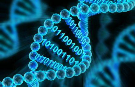 bioinformatics-1